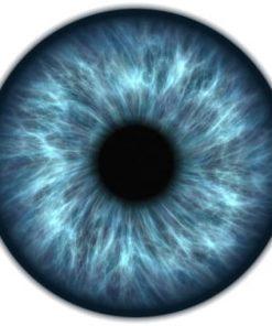 Sistema ocular